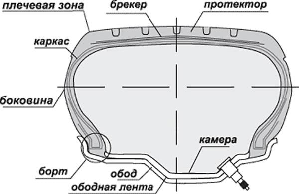 Покрышка в разрезе
